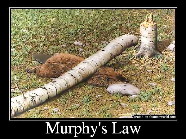 Murphy's Law: How to Crush Murphy with Better Business Systems